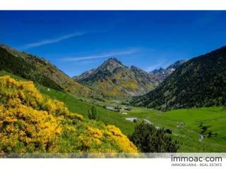 Acheter Terrain Incles Andorre : 3298 m2, 560 001 EUR