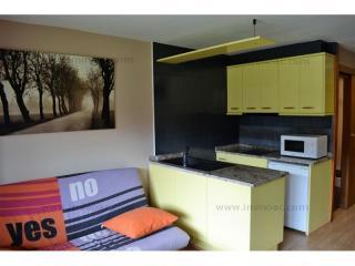 Buy Studio Bordes d Envalira Andorra : 35 m2, 94 500 EUR